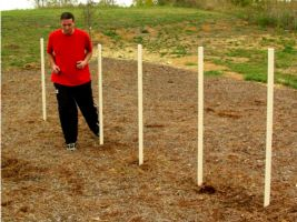 Fitness Play Agility Poles