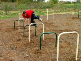 Over / Under bars for School track & field practice