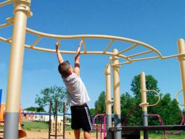 Twisting turning s-curved monkey bars